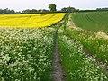 Farmland, Bothampstead - geograph.org.uk - 809919.jpg