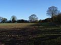 Farmland, Huish Hill - geograph.org.uk - 282688.jpg