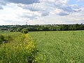 Farmland, Market Lavington - geograph.org.uk - 846505.jpg