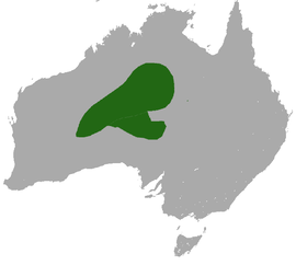 Fat-tailed False Antechinus area.png