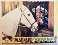 Fiddlin' Buckaroo lobby card.JPG