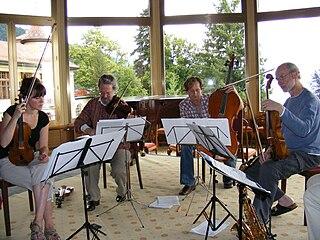 String quartet Musical ensemble of four string players