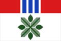 Flag of Sosnovskoe (Volgograd oblast).png