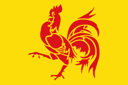 Flag of Wallonia.svg