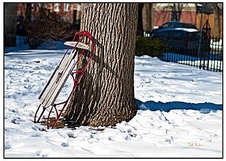 Flexible Flyer - Image: Flexible Flyer on Tree
