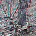 Flickr - jimf0390 - JimF 03-13-12 0005a Careful it might bite.jpg