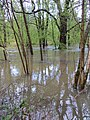 Flooded - River Lyd - April 2012 - panoramio.jpg