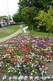 Flower bed and footpath by Scanlons Bridge - geograph.org.uk - 2019435.jpg