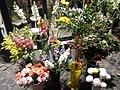Flowers - Fiori (22618977098).jpg