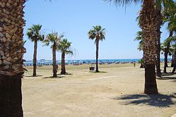 Finikoudes Beach