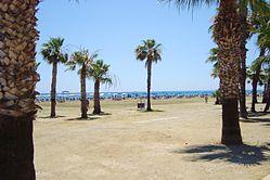 Finikoudes Beach