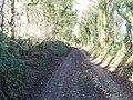 Follow the track - geograph.org.uk - 1621388.jpg