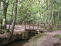Footbridge over Bartley Water, west of Busketts Lawn Inclosure, New Forest - geograph.org.uk - 51723.jpg