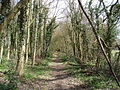 Footpath, south of Little Kingshill - geograph.org.uk - 146122.jpg