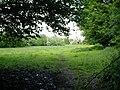 Footpath across field, King's Somborne - geograph.org.uk - 178723.jpg