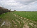 Footpath and field boundary - geograph.org.uk - 375473.jpg