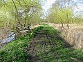 Footpath heading W along the Stour - geograph.org.uk - 371269.jpg