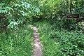 Forêt domaniale de Bois-d'Arcy 8.jpg