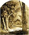 Forest Hymn pg 15.jpg