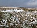 Frozen loughs on White Edge - geograph.org.uk - 682117.jpg