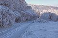 Góry Izerskie, Czerniawa Zdrój - panoramio (4).jpg