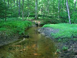 Gaines Mill, Boatswain Creek.jpg