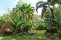 Garden view - Mounts Botanical Garden - Palm Beach County, Florida - DSC03865.jpg