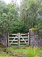 Gate in the wall - geograph.org.uk - 1439155.jpg