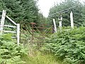 Gate to forest with TV aerial - geograph.org.uk - 1437821.jpg
