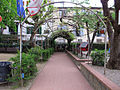 Giardino di borgo allegri 07.JPG