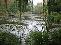 Giverny waterlillies and willows - panoramio.jpg