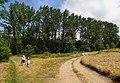Gmina Węgorzyno, Poland - panoramio (10).jpg