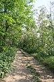 Gorgonzola - Parco Agricolo Sud Milano 03.jpg