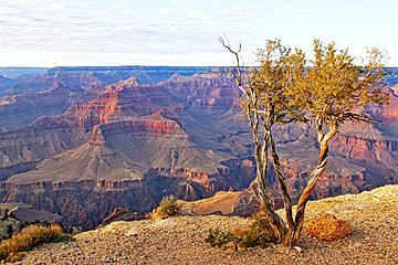 Grand Canyon National Park in Arizona, United States.jpg