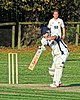 Great Canfield CC v Hatfield Heath CC at Great Canfield, Essex, England 36.jpg