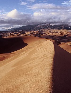 English: View atop High Dune, Great Sand Dunes...