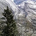 Grindelwald - panoramio (21).jpg