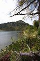 Großsee tauplitzalm 34260 2016-09-26.JPG