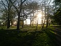 Gunnersbury Park.jpg