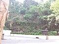 HK 灣仔 Wan Chai Mid-levels 堅尼地道 Kennedy Road September 2019 SSG 11.jpg