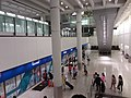 HK 赤鱲角 Chek Lap Kok 香港國際機場 Hong Kong Int'l Airport Terminal T1 August 2019 SSG 10.jpg