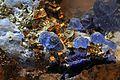 Haüyne, afghanite, pyrite, calcite (2).jpg