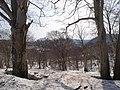 Hachimantai - panoramio.jpg