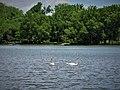 Hagerstown City Park 11.jpg