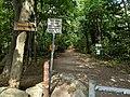Haggetts Rail Trail, Andover MA.jpg