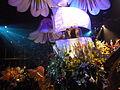 Haifa International Flower Exhibition P1140033.JPG