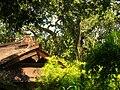 Hakone Gardens, Saratoga, CA - IMG 9169.JPG