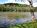Hardthauser See - panoramio.jpg