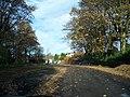 Harlow Pines - geograph.org.uk - 1562771.jpg