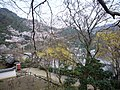 Hasedera Temple 長谷寺 - panoramio (16).jpg
